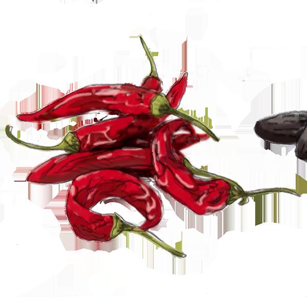 liste-epice-placard-indispensable-piment-cayenne